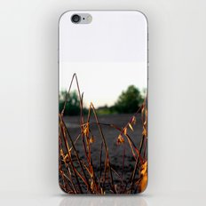 Where There's A Will iPhone & iPod Skin