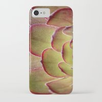 succulent iPhone & iPod Cases featuring Succulent by Shy Photog