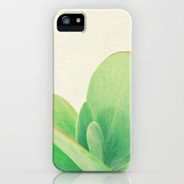 Paddle Plant iPhone Case