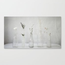 Simply Bottles Canvas Print