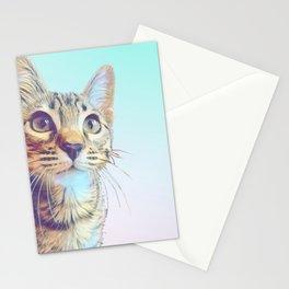 Gouda Blue Stationery Cards