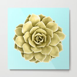 Yellow Succulent Plant on Teal Metal Print