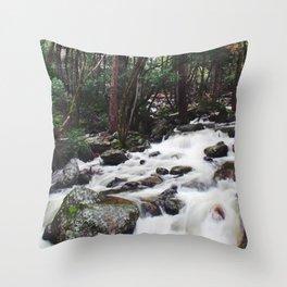 Spring flow Throw Pillow