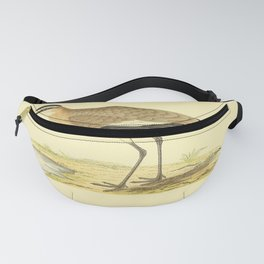 Vintage Print - A History of the Birds of Europe (1875) - Social Plover Fanny Pack