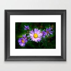 Purple Floral Framed Art Print