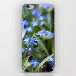 Little blue stars blooming iPhone Skin
