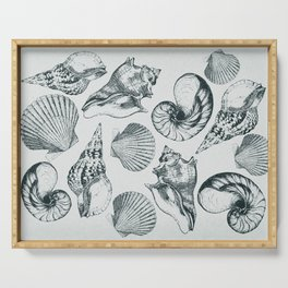 shells Serving Tray