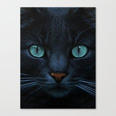 eyes of blue Canvas Print
