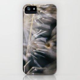 The Waltz  iPhone Case