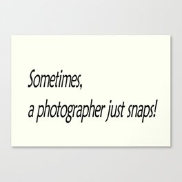 Sometimes, a photographer just snaps! Canvas Print
