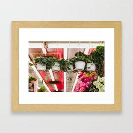 Mountain City Plant Co. Framed Art Print