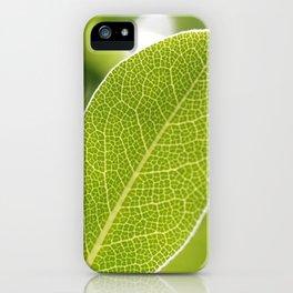 leave-leaf iPhone Case
