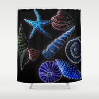 shells Shower Curtains featuring Shells  by Coffee and Pen