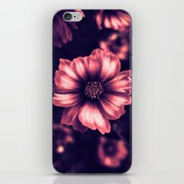 The Beauty iPhone Skin