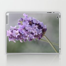 Lavender dreams Laptop & iPad Skin