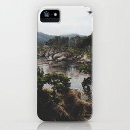 Bluefish Cove iPhone Case