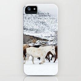 Carol Highsmith - Wild Horses iPhone Case