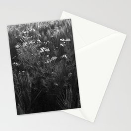 variation on a theme Stationery Cards