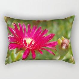 Pink Ice Plant Flower Rectangular Pillow