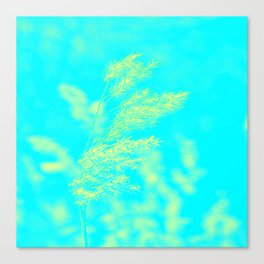 nature -yallow turquoise Canvas Print