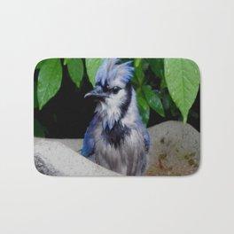 Wet blue jay Bath Mat