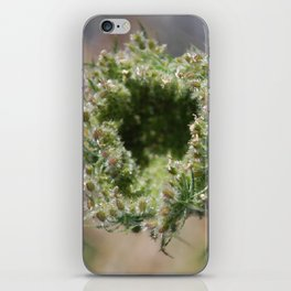 lace under glass iPhone Skin