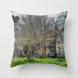 Disturbance At The Heron House Throw Pillow