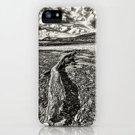 Driftwood Mono iPhone Case