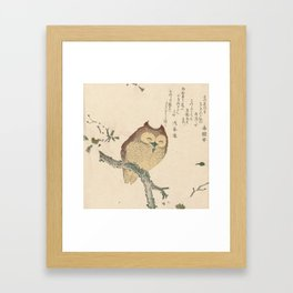 Owl on a Magnolia Branch by Kubota Shunman Framed Art Print