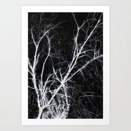 Dark Naked Presence of Trees in Winter Art Print