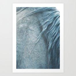 Wild horse photography, fine art print of the mane, for animal lovers, home decor Art Print