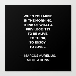 Stoic Wisdom Quotes - Marcus Aurelius Meditations - What a privilege it is to be alive Canvas Print