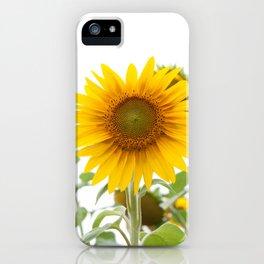 Sunflower #1 #decor #art #society6 iPhone Case