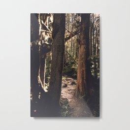 Forest Wonderland Metal Print