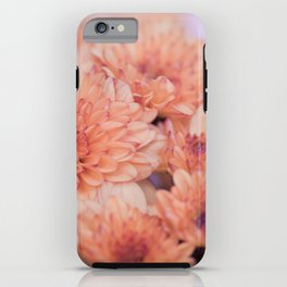 Chrysanthemum flowers 8605 iPhone Case