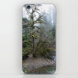 A Creek Runs Through It iPhone Skin