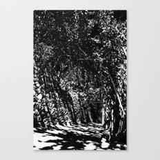 disturb III Canvas Print