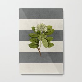 botanical stripes 5 -gray Metal Print