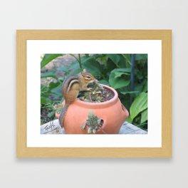 Chipmunk and Flowerpot Framed Art Print