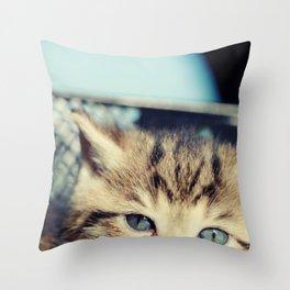 CAT, KATZE Throw Pillow