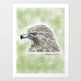 Majestic Hawk Art Print