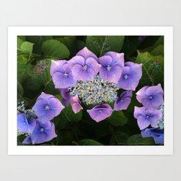 Purple Posy Perfection Art Print