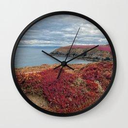 Irish Pomegranate Coast Wall Clock