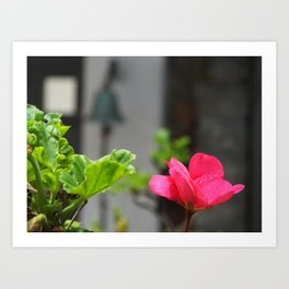 Tranquillity in The Afternoon Art Print
