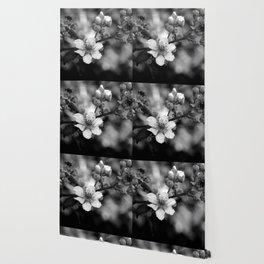 Blackberry Flower Wallpaper