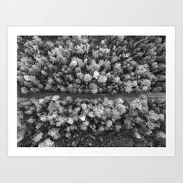 The Forest (Black and White) Art Print