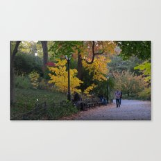 Central Park Fall Series 4 Canvas Print