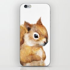 Little Squirrel iPhone & iPod Skin