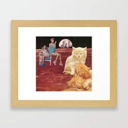 des chatons pour american beauty Framed Art Print