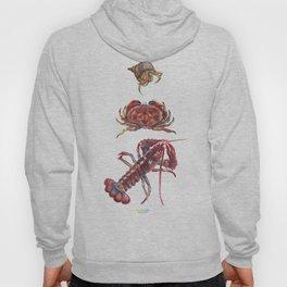 Crustaceans Hoody